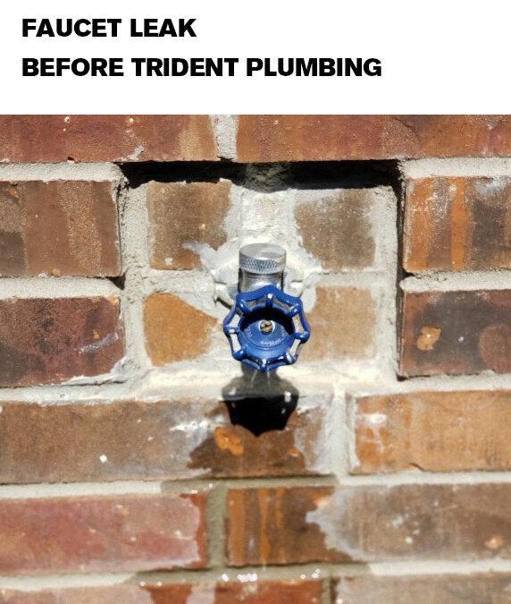 Faucet Repairs & Installations
